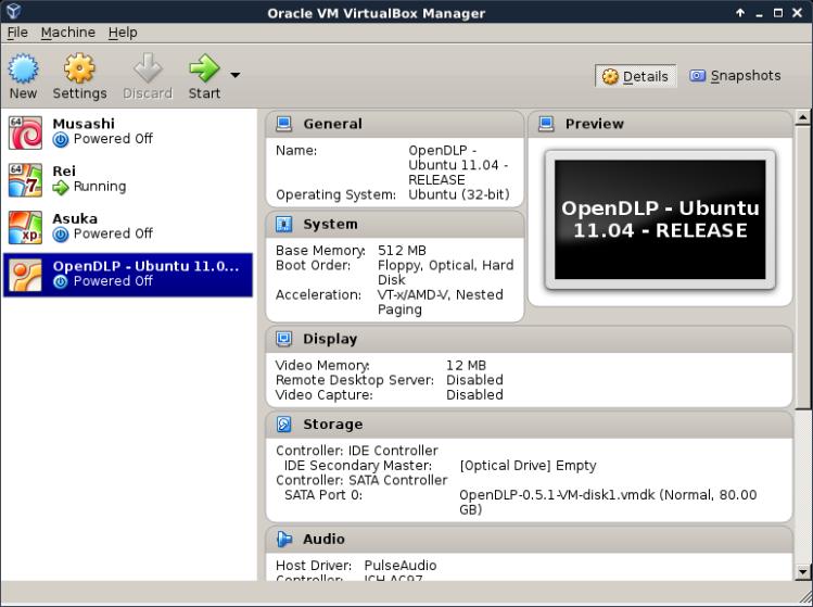 OpenDLP-07